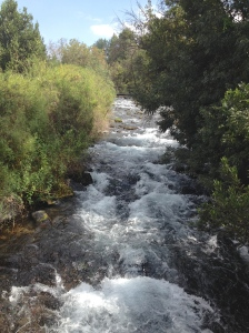 Dan River is the largest and most important of 3 sources for the Jordan River