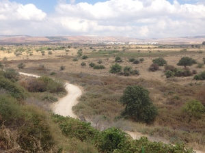 Old Patrol road between Israel and Syria