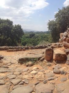Tel Dan Ruins